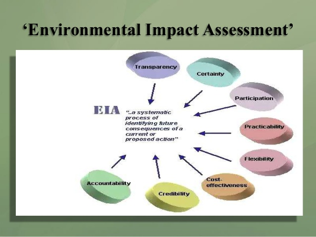 Environmental dissertation topics